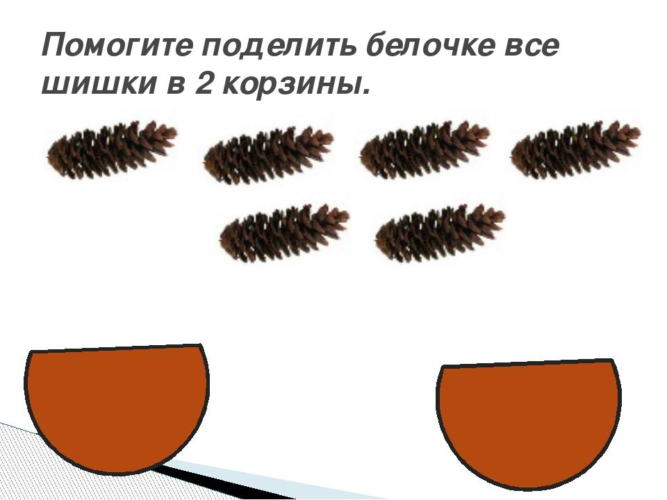 Помогите поделить белочке все шишки в 2 корзины.