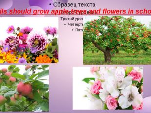 Pupils should grow apple-trees and flowers in school garden.