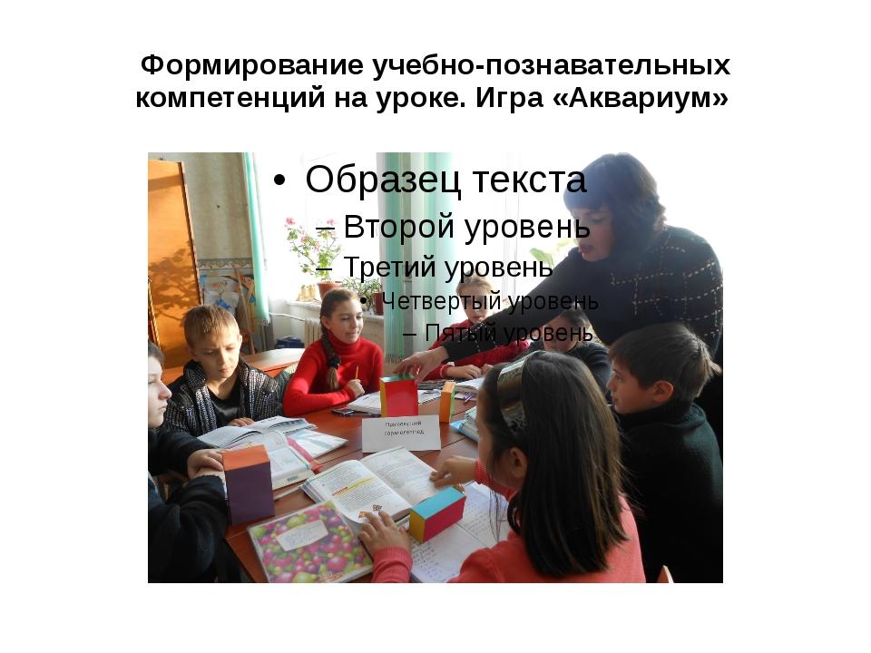 Формирование учебно-познавательных компетенций на уроке. Игра «Аквариум»