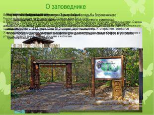 О заповеднике Музей находится на территории Центральной усадьбы Воронежского
