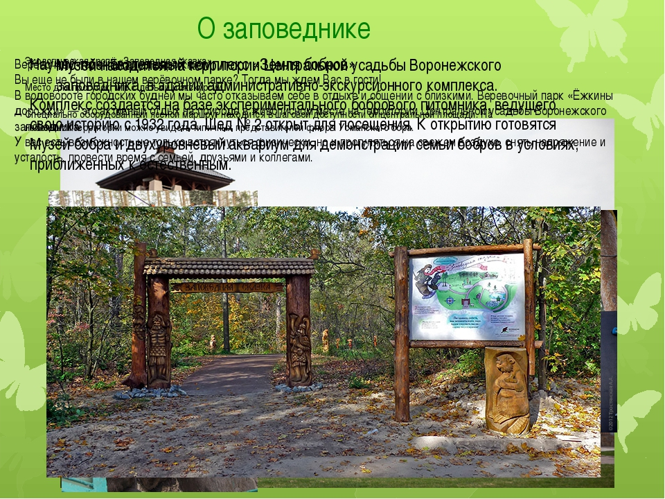 О заповеднике Музей находится на территории Центральной усадьбы Воронежского...