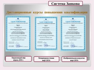 Дистанционные курсы повышения квалификации Окружающий мир апрель 2015 г. Лите