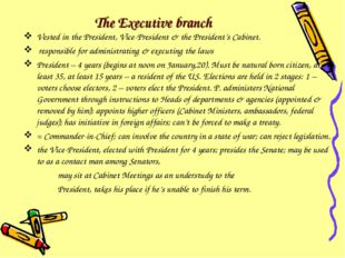 The Executive branch Vested in the President, Vice-President & the President'