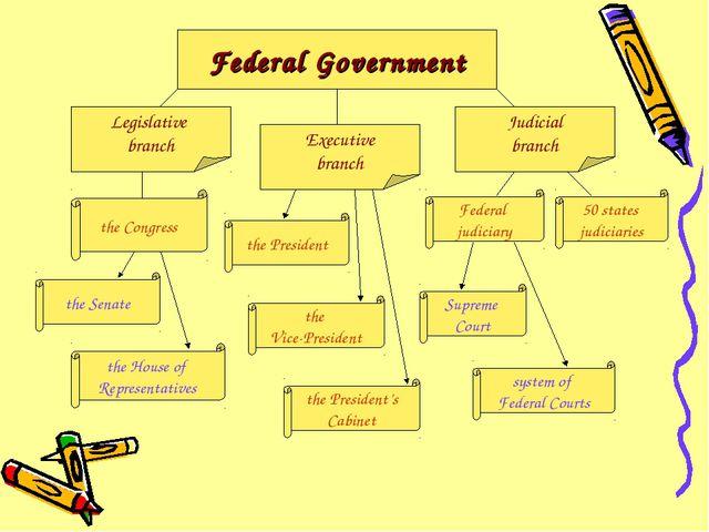 Federal Government Legislative branch Executive branch Judicial branch the Se...
