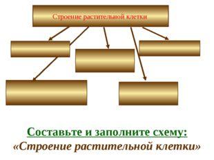 Строение растительной клетки Составьте и заполните схему: «Строение раститель
