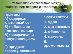 Установите соответствие между содержанием первого и второго столбцов Части кл