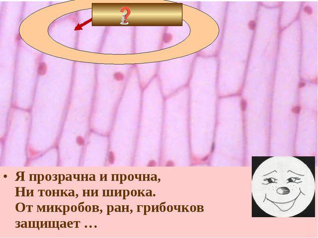 Я прозрачна и прочна, Ни тонка, ни широка. От микробов, ран, грибочков защища...