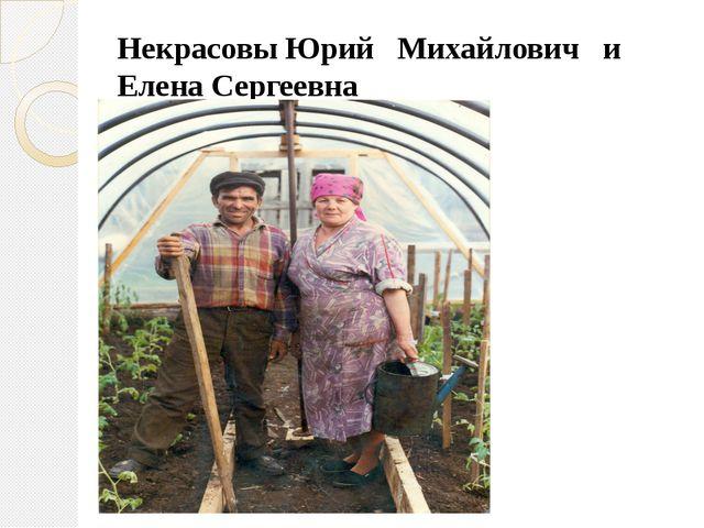 Некрасовы Юрий Михайлович и Елена Сергеевна