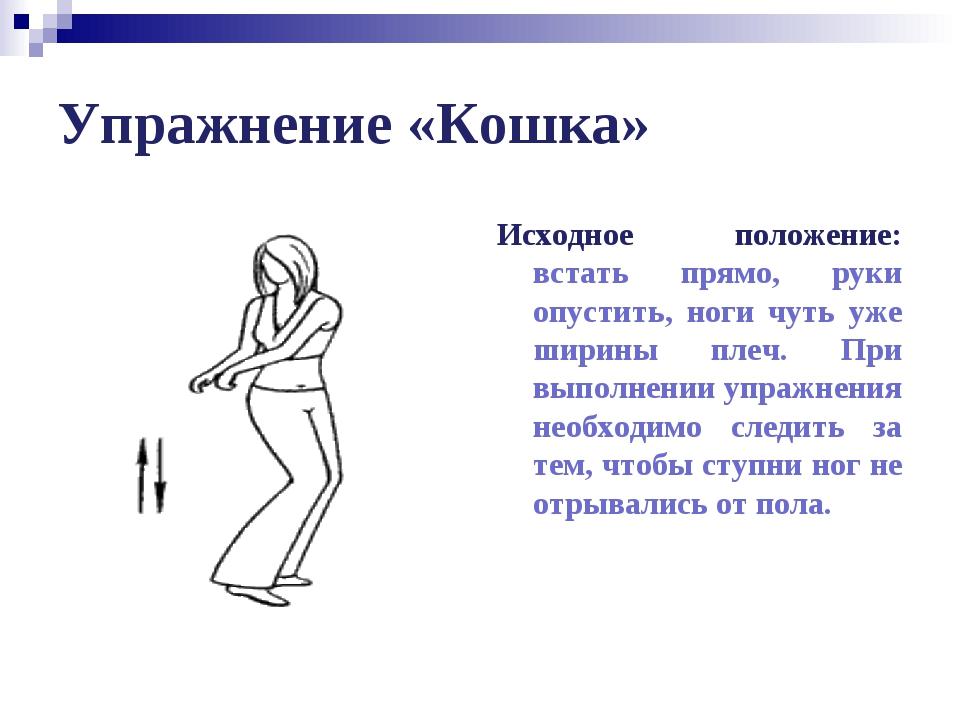 Упражнение «Кошка» Исходное положение: встать прямо, руки опустить, ноги чуть...