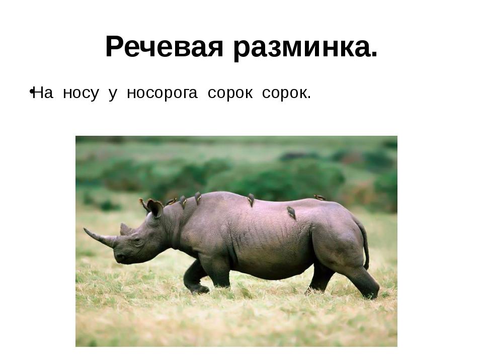 Речевая разминка. На носу у носорога сорок сорок.