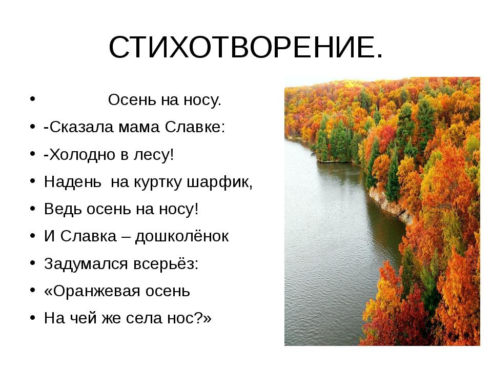 СТИХОТВОРЕНИЕ. Осень на носу. -Сказала мама Славке: -Холодно в лесу! Надень н...