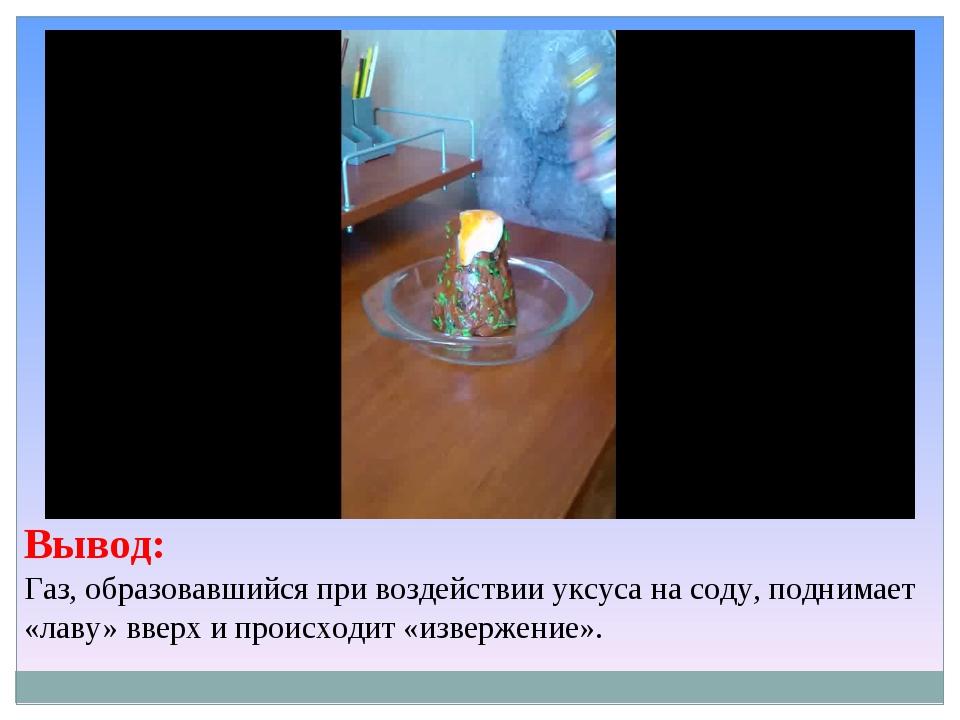 Вывод: Газ, образовавшийся при воздействии уксуса на соду, поднимает «лаву» в...