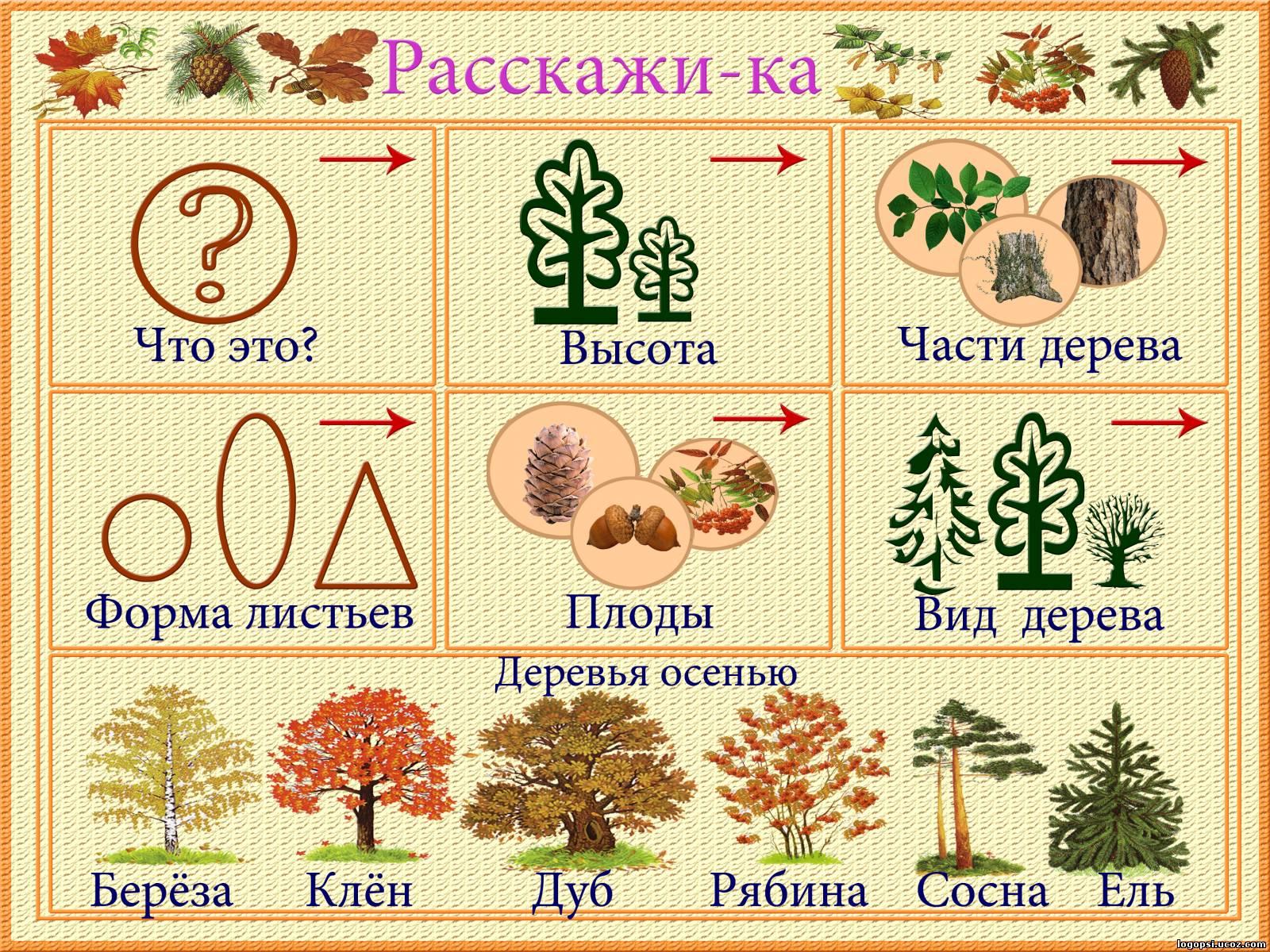 http://logopsi.ucoz.com/_ph/96/858892727.jpg
