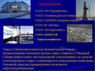 Предприятия Город Губкинский возник как базовый центр в связи с промышленным