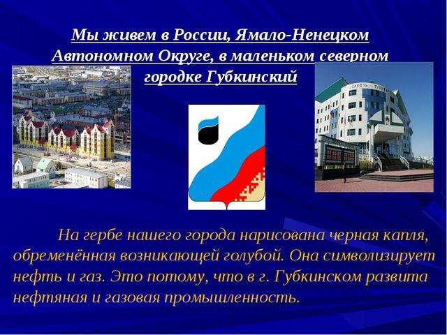 Мы живем в России, Ямало-Ненецком Автономном Округе, в маленьком северном гор...