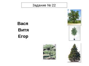 Задание № 22  Вася Витя Егор