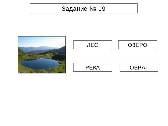 Задание № 19 ЛЕС РЕКА ОЗЕРО ОВРАГ