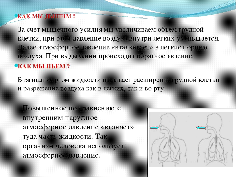 КАК МЫ ДЫШИМ ? За счет мышечного усилия мы увеличиваем объем грудной клетки,...
