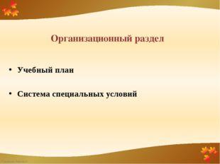 Организационный раздел Учебный план Система специальных условий FokinaLida.75