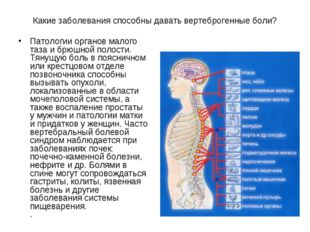 Какие заболевания способны давать вертеброгенные боли? Патологии органов мало