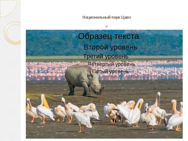 Национальный парк Цаво н