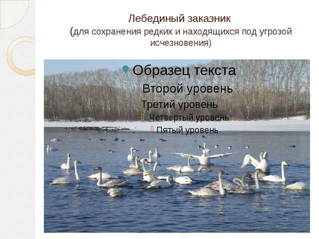 Лебединый заказник (для сохранения редких и находящихся под угрозой исчезнове...