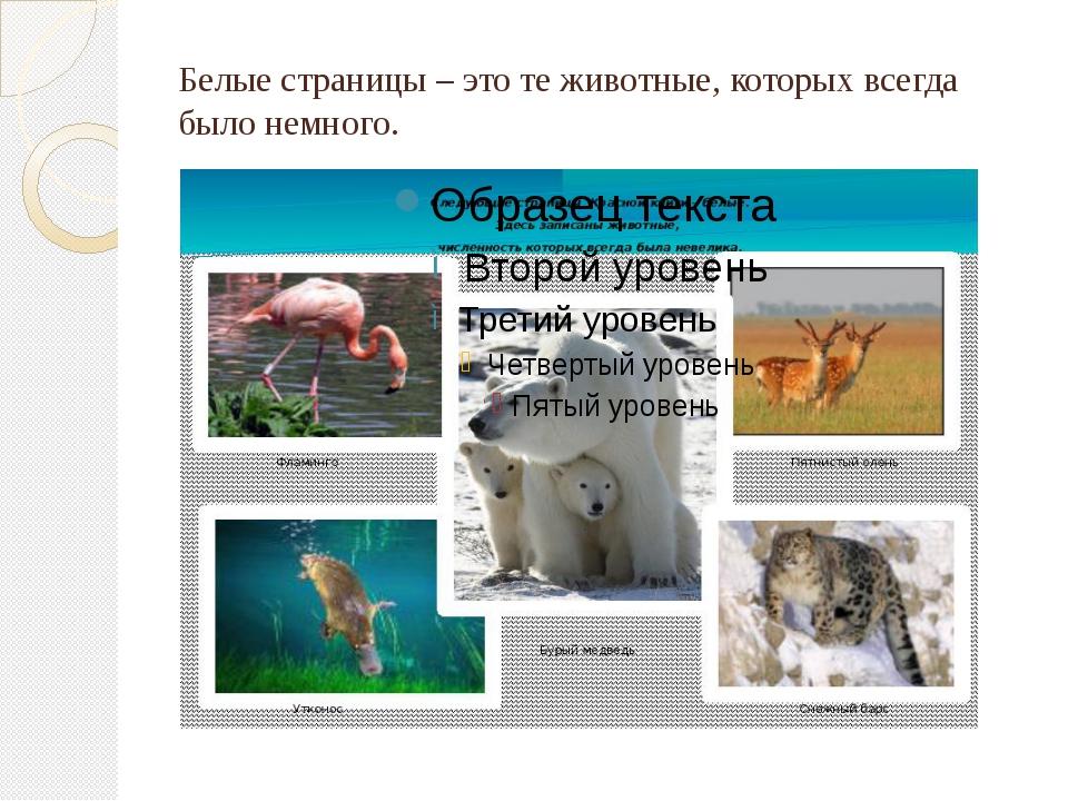 Белые страницы – это те животные, которых всегда было немного.