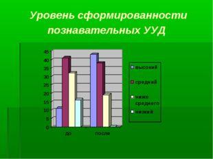 Уровень сформированности познавательных УУД