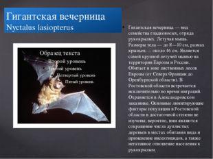 Гигантская вечерница Nyctalus lasiopterus Гигантская вечерница — вид семейств