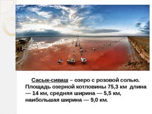 Сасык-сиваш – озеро с розовой солью. Площадь озерной котловины 75,3 км длина