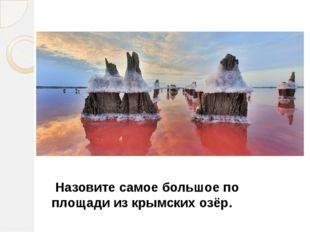 Назовите самое большое по площади из крымских озёр.