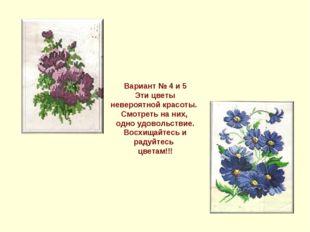 Вариант № 4 и 5 Эти цветы невероятной красоты. Смотреть на них, одно удовольс