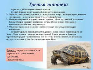 Черепахи – довольно уникальные животные! Особый феномен представляют собой