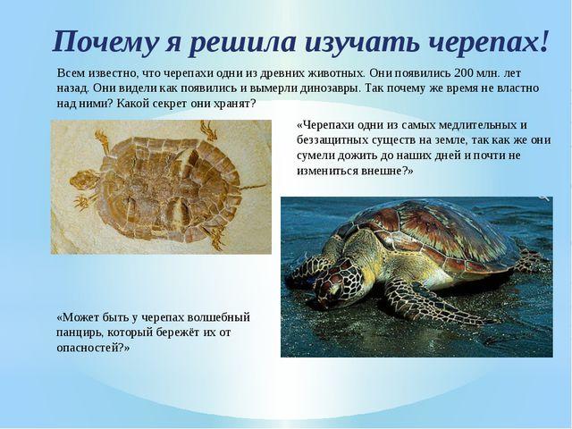 Почему я решила изучать черепах! Всем известно, что черепахи одни из древних...