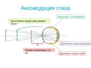 Аккомодация глаза Расстояние наилучшего зрения 25 см Предел аккомодации 12 см