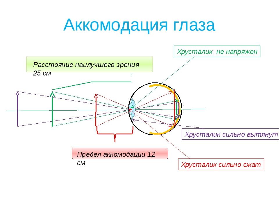 Аккомодация глаза Расстояние наилучшего зрения 25 см Предел аккомодации 12 см...