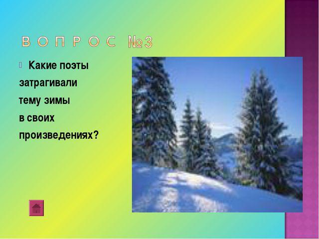 Какие поэты затрагивали тему зимы в своих произведениях?