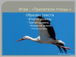 Игра : «Прилетели птицы.»