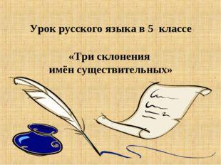 Урок русского языка в 5 классе «Три склонения имён существительных»