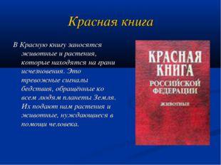 Красная книга В Красную книгу заносятся животные и растения, которые находятс