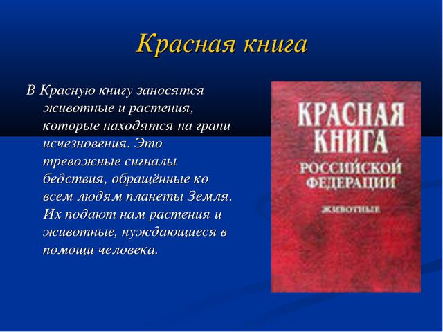 Красная книга В Красную книгу заносятся животные и растения, которые находятс...