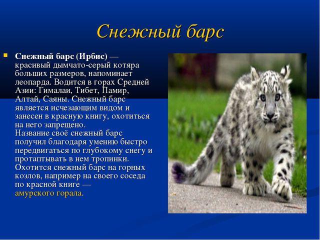 Снежный барс Снежный барс (Ирбис) — красивый дымчато-серый котяра больших раз...