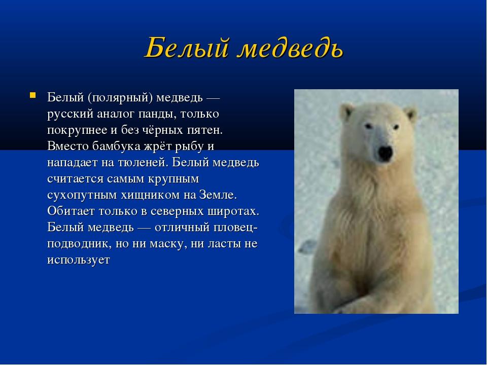 Белый медведь Белый (полярный) медведь — русский аналог панды, только покрупн...
