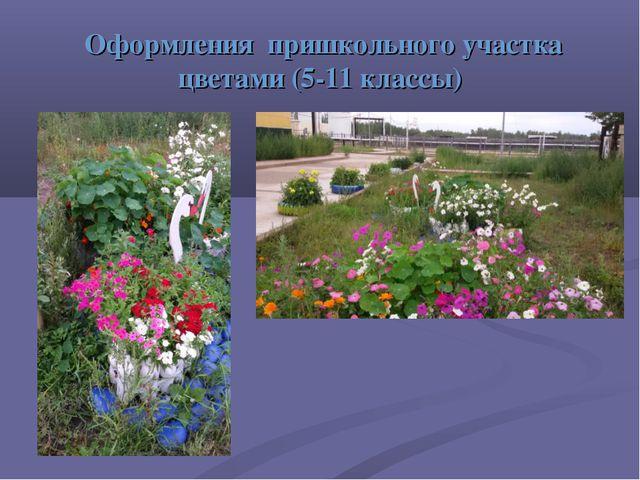 Оформления пришкольного участка цветами (5-11 классы)