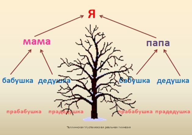 http://player.myshared.ru/21830/data/images/img24.jpg