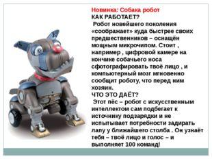 Новинка: Собака робот КАК РАБОТАЕТ? Робот новейшего поколения «соображает» ку