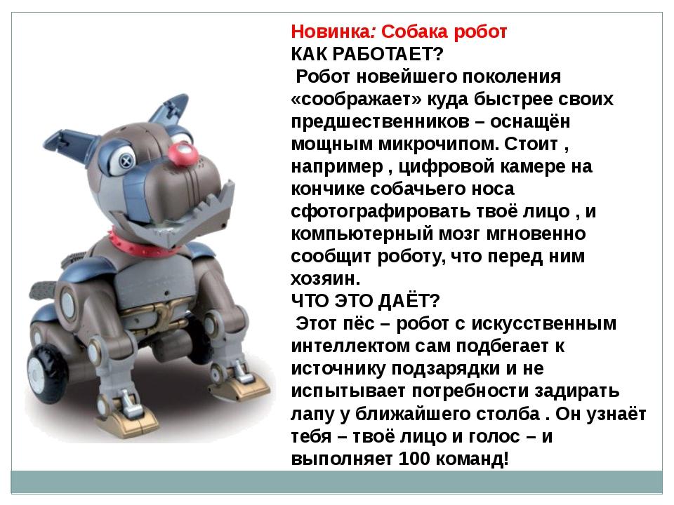 Новинка: Собака робот КАК РАБОТАЕТ? Робот новейшего поколения «соображает» ку...