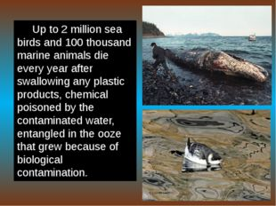 Up to 2 million sea birds and 100 thousand marine animals die every year afte