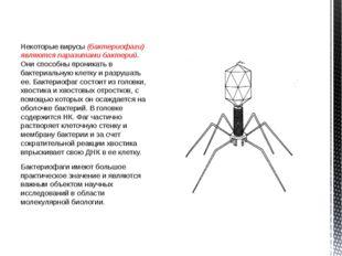 Некоторые вирусы (бактериофаги) являются паразитами бактерий. Они способны пр