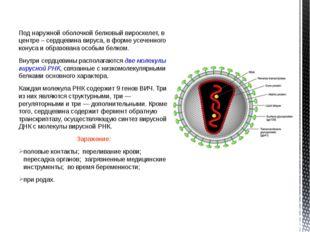 Под наружной оболочкой белковый вироскелет, в центре – сердцевина вируса, в ф